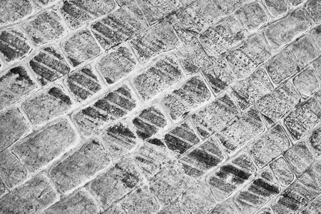 tire marks: Fesh tire marks on a cobblestone street