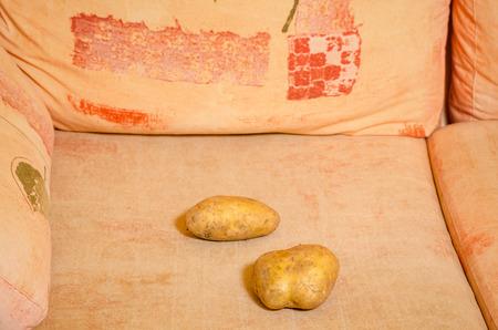 trait: Literla shot of the saying couch potato Stock Photo