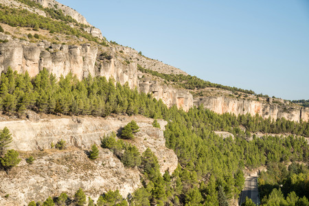 forested: Forested Jucar river canyon in Cuenca, La Mancha, Spain