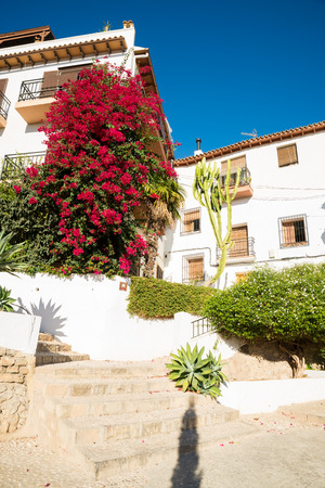 Whitewashed houses overgrown with flowering bougainvillea in Altea, Costa Blanca, Spain