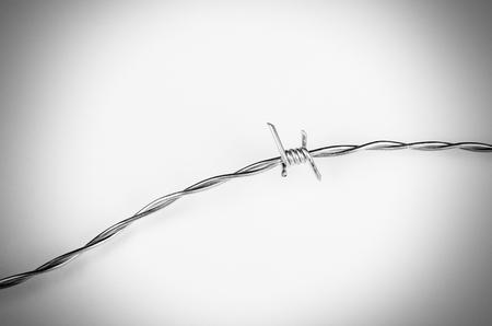 Stacheldraht in einem konzeptionellen Studio geschossen auf Grenzen, Migration und Freiheit Standard-Bild - 69401301