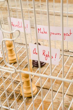Imprisoned pawns staging a demostration, a civil and social rights concept