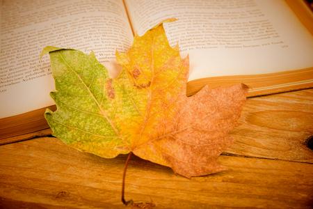 Still life depicting cosy autumn indoor life Stock Photo