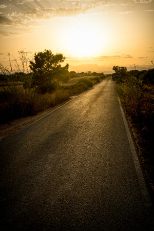 Road leading into the sunset, a freedom and travel concept Archivio Fotografico