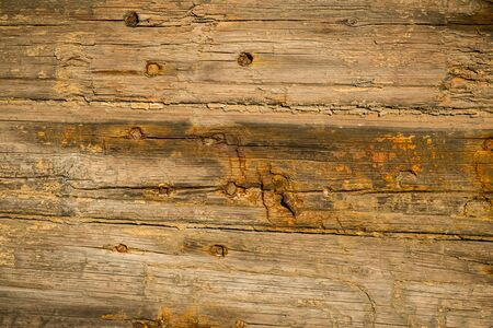 Heavily weathered wood on an old door