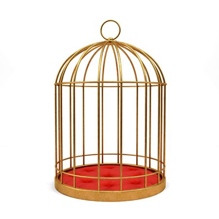 confinement: Golden cage isolated on white background 3D rendering