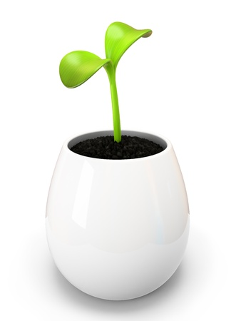 sprout growth: Young green sprout in white pot illustration