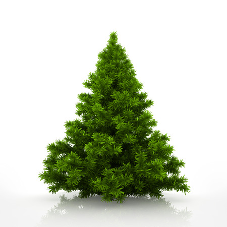 Green christmas tree isolated on white background 写真素材