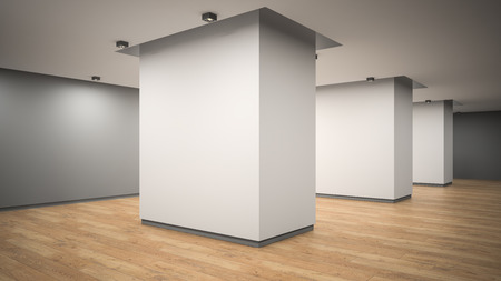 Empty gallery interior angle view 3D rendering Stock Photo
