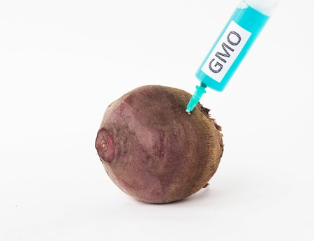 Beetroot on a white background in which is injected from the syringe gmo and nitrates, close-up, genetically modified organism, beetroot
