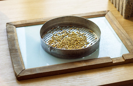 Laboratory for the inspection and analysis of grain, on the table lies a sieve and grain, corn Stockfoto