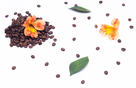 coffee grains and orange hibiscus flower on a white background, organic