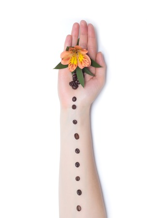 Female hand on a white background with coffee beans and orange hibiscus flowers, art element, decoration, background