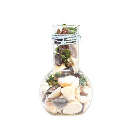 Glass vessel with seashells, decoration element, white background, isolate ornament Banco de Imagens