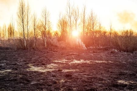Burnt dry grass in nature after a fire against the backdrop of an evening sun set, the danger of forest fires Stock Photo - 126279601