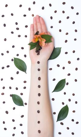 female hands with coffee grains and flowers and hibiscus petals on a white background, design element and decoration, background, coffee beans Reklamní fotografie