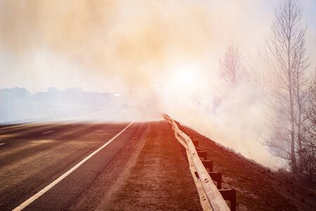 road in the smoke from forest fires on the background of the forest, problem Reklamní fotografie