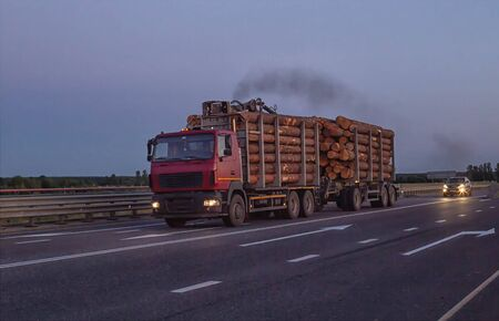 A loaded timber truck transports timber logs with an overload on the highway, black smoke. The concept of transportation of timber and wood, copy space, business Reklamní fotografie