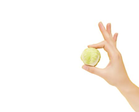 Female hand with a small head of cabbage on a white background concept of vegetarianism and healthy food, white background, isolate, copy space, agriculture Reklamní fotografie