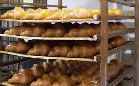 Freshly baked croissants in the confectionery industry. Making puff pastry, dessert