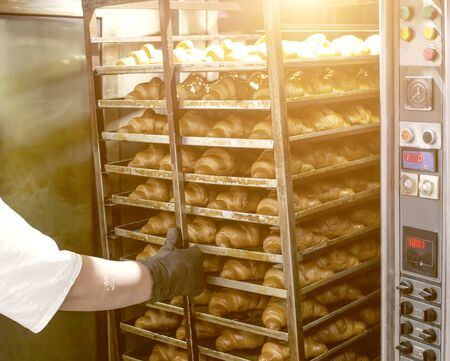 The cook removes hot fresh croissants from puff pastry from the oven. Confectionery production. Food industry Reklamní fotografie