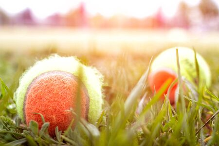 A lot of tennis balls on the tennis court on the grass, background, sport Stock Photo - 135490612