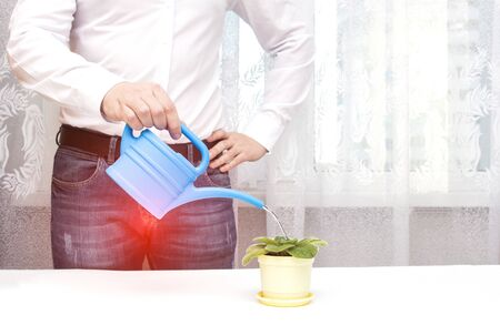 A male office worker is watering a flower from a watering can in the office, a red spot in the groin. The concept of prostate diseases in men, prostate cancer, prostatitis, urinary incontinence, pain