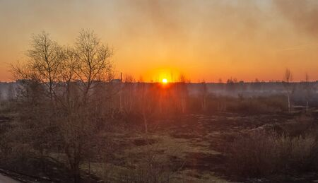 Orange sun on a background of smoke after a fire in the forest. Burnt black grass in nature, nobody