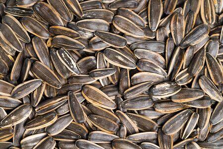 Sunflower seeds from above Standard-Bild
