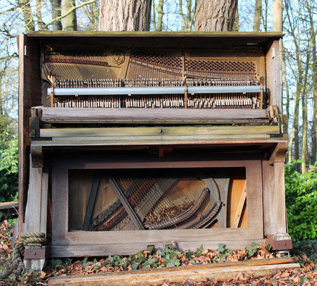 old piano: Old piano in the forrest