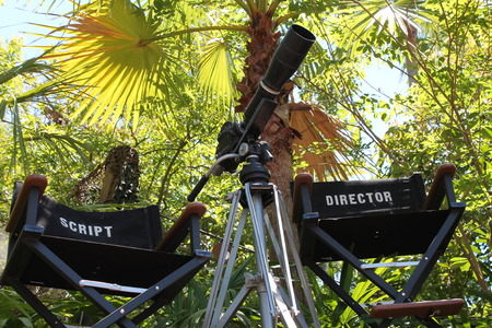 Director Film Set