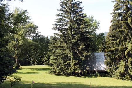 hillside: Harrachov Hillside