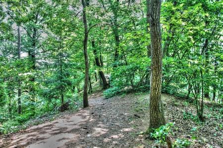 skala: Hillside path near Vranov Castle Mala Skala