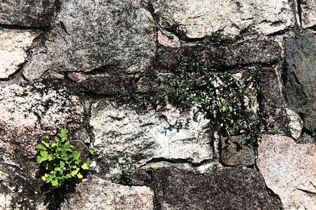 artictic: Artistic Fresco Stoen Wall Background