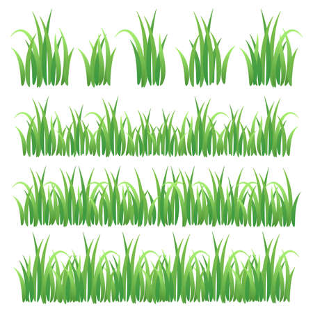 Set of Green Grass Isolated on White Background. Grass collection. Green summer lawn set