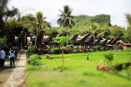 toraja: Tongkonan - Traditional House of Toraja Stock Photo