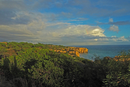 vegatation: sea shore with sandstone cliff and green subtropical vegetation with blue sky and white clouds