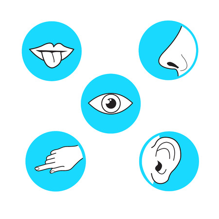 Five senses  methods of perception, taste sight touch smell sound vector icon on azure blue circle simple black outline and white illustration mouth with tongue, ear, eye, hand finger, nose Vettoriali