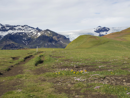 green grass footpath and hill with view on glacier Skaftafellsjokull, Vatnajokull spur in Skaftafell Park, South Iceland