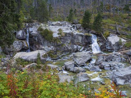 waterfall cascade on wild river stream studeny potok with boulders, autumn colored tree at mountain valley Velka Studena Dolina in Slovakia High Tatra mountains. 版權商用圖片