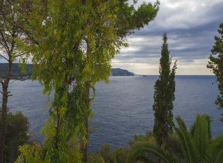 Green tropical vegetation palm and trees with view on Paleokastritsa bay, summer cloudy sky, Corfu, Kerkyra, Greece