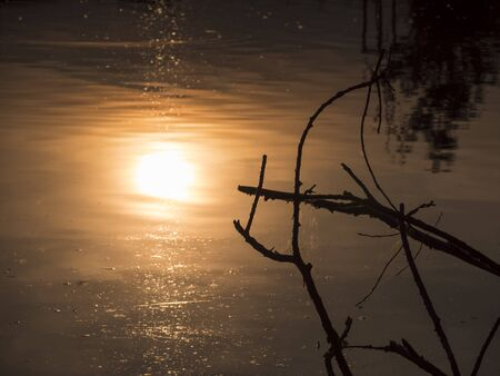 Beautiful orange Golden Twilight Sunset reflecting on calm lake Water Surface with dark stick and trees