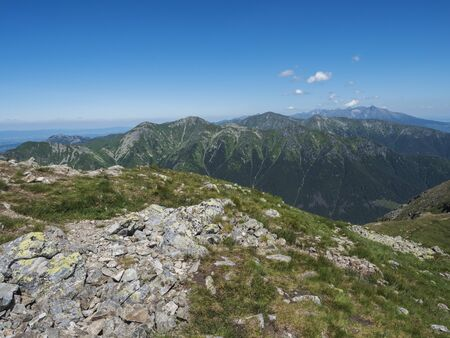 Mountain landscape of Western Tatra mountains or Rohace with view on high tatras with Krivan peak from hiking trail on Baranec. Sharp green grassy rocky mountain peaks with scrub pine and alpine flower meadow. Summer blue sky background