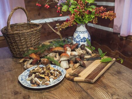 Assorted edible mushroom Boletus close up on wooden rustic table with wicker basket, autumnal flower bouquet, cutting board, knife and green spruce tree twig. Cooking and preparing delicious organic mushroom food. Autumn Cep Mushrooms. Mushrooms Picking concept