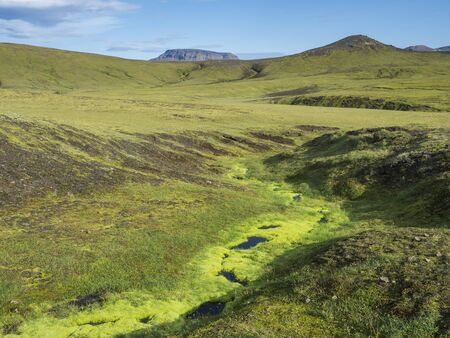 Lush vivid green moss in small stream. Volcanic landscape with green hills and colorful volcanos at Fjallabak Nature Reserve, Iceland. Summer blue sky