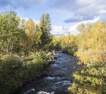 Flussbach im Sarek-Nationalpark in Schweden-Lappland mit Birken- und Fichtenwald. Frühherbstfarben, blauer Himmel, weiße Wolken