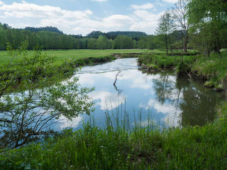 idyllic landscape of winding river stream meander at lush green meadow with deciduous tree forest, blue sky backgound. Late spring sunny afternoon, vibrant colors