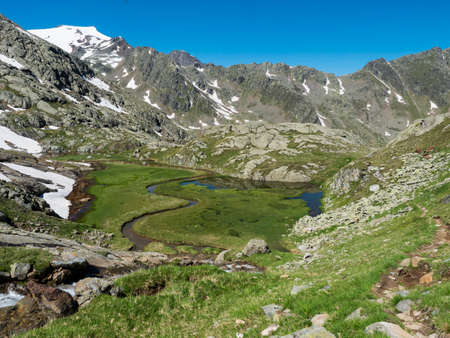 Top view of beautiful wetland with spring stream, alpine mountain meadow called Paradies with lush green grass and snow capped mountain peaks. Stubai hiking trail, Summer Tyrol Alps, Austria