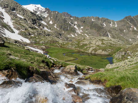 Top view of beautiful wetland with wild stream cascade, alpine mountain meadow called Paradies with lush green grass and snow capped mountain peaks. Stubai hiking trail, Summer Tyrol Alps, Austria Archivio Fotografico