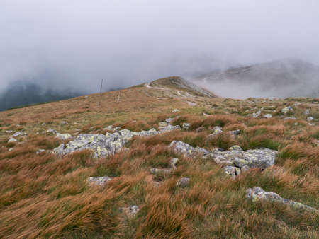 View of mountain meadow, grassy hills with footpath of hiking trail in a dangerous thick fog with almost zero visibility. Low Tatras mountains ridge, Slovakia, late summer windy day